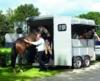 boeckmann-traveller-horse-trailer-165415.jpg
